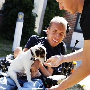 Pojke med en hundvalp i knät. Foto.